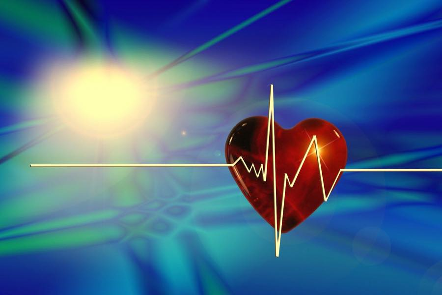 heart-ANSA-900x600